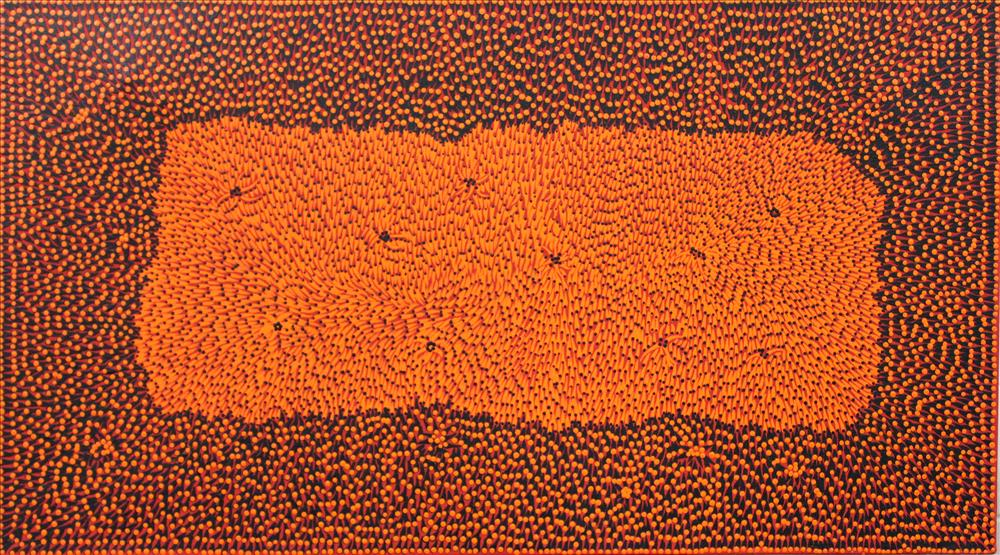 australia aboriginal art painting